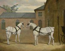 Mr. Sowerby's Grey Carriage Horses in his Coachyard at Putteridge Bury by John Frederick Herring Snr