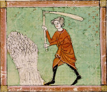 Fol.59r August: Threshing Wheat by Matfre Ermengaut