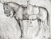 Mule, from the Vallardi Album von Antonio Pisanello