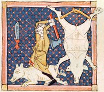 Fol.59v December: Killing Pigs by Matfre Ermengaut