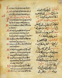 Ms C-868 f.95 The Psalms of the Prophet David by Islamic School