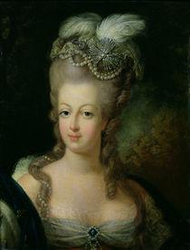 Portrait of Marie-Antoinette de Habsbourg-Lorraine von French School