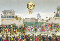 Entry into Paris of Louis XVIII 4th May 1814 von French School