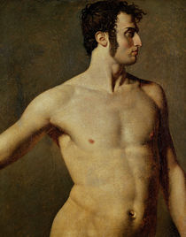Male Torso, c.1800 von Jean Auguste Dominique Ingres