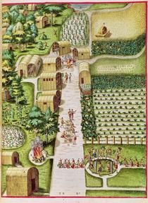 The Village of Secoton, from 'Admiranda Narratio...' von Theodore de , after White, John Bry