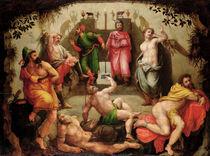 Plato's Cave by Flemish School