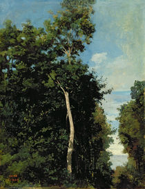 The Wood on the Cote de Grace in Honfleur von Jean Baptiste Camille Corot