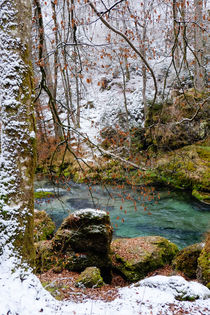Neuschnee am Fluss by Thomas Matzl