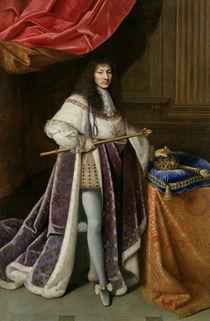 Portrait of Louis XIV von French School