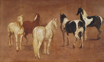 Study of Five Horses by Adam Frans Van der Meulen