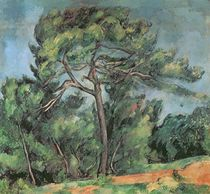 The Large Pine, c.1889 von Paul Cezanne