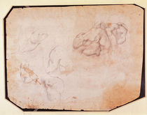 Study of Muscles by Michelangelo Buonarroti