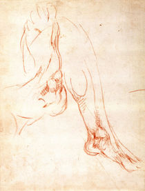 Study of a lower leg and foot by Michelangelo Buonarroti