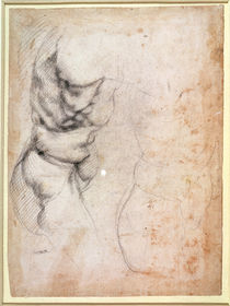 Study of torso and buttock by Michelangelo Buonarroti