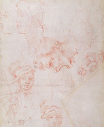 Studies of heads, 1508-12d by Michelangelo Buonarroti