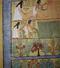 Detail of a harvest scene on the East Wall by Egyptian 19th Dynasty