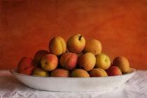 Apricots Delight by Priska  Wettstein