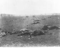 The Harvest of Death, Gettysburg by Timothy O'Sullivan