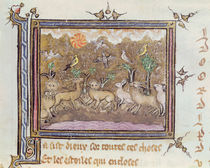 Ms 1044 fol.18 The Creation of the Animals von French School