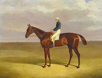 'Margrave' with James Robinson Up by John Frederick Herring Snr