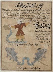 Ms E-7 fol.25a Aquarius and Pisces von Islamic School
