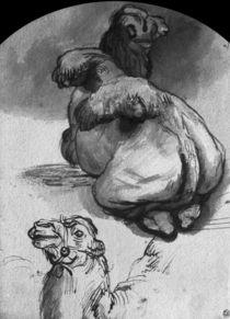 Camels von Rembrandt Harmenszoon van Rijn