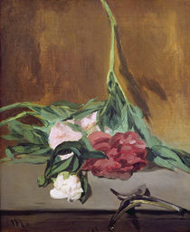 Stem of Peonies and Secateurs von Edouard Manet