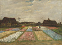 Flower Beds in Holland, c.1883 von Vincent Van Gogh