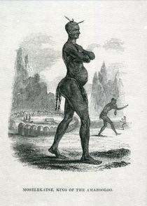 Moselekatse King of the Amazooloo von William Cornwallis Harris