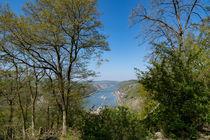 Das Mittelrheintal an der Burg Pfalzgrafenstein von Ronald Nickel