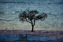 Der Baum by Claudia Evans