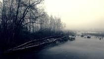 Schaurig ist ́s übers Moor zu gehen by Dirk Noelle