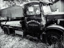 Poultry Farm Truck by Michael McGimpsey