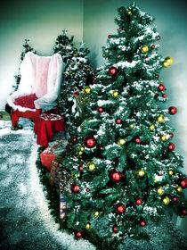 Christmas Display by Michael McGimpsey