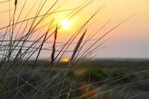 Sonnenuntergang am Meer von Jens Uhlenbusch