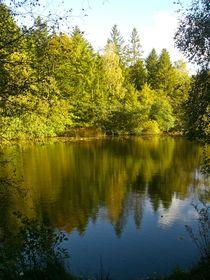 Stiller Waldsee von atelier-kristen