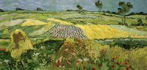 Van Gogh / Fields in Auvers by AKG  Images