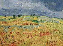 V. v. Gogh, Felder, mit blühendem Mohn von AKG  Images