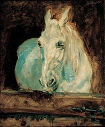Toulouse-Lautrec / White Horse / 1881 by AKG  Images