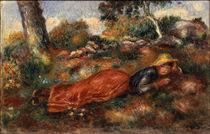 A.Renoir / Jeune fille sur l'herbe von AKG  Images