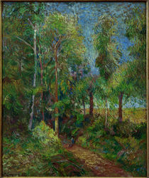 "P.Gaugin, ""The Edge of the Forest"" / painting by AKG  Images"
