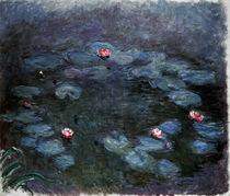 Monet / Water lilies /  c. 1914/1917 by AKG  Images