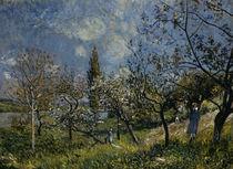 Sisley / Obstgarten im Frühling/ 1881 von AKG  Images