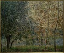 A.Sisley, Der Canal du Loing im Frühjahr by AKG  Images