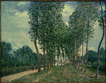 A.Sisley, An den Ufern des Loing bei Moret by AKG  Images