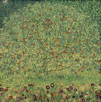 Gustav Klimt / Appletree I /  c. 1912 by AKG  Images