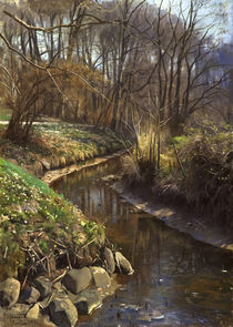 Peder Mørk Mønsted, Spring at the Forest Stream by AKG  Images