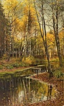 P.Mönsted, Birkenwald im Herbstlicht von AKG  Images