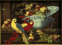 B. van der Alst / Still Life with Parrots by AKG  Images