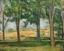 P.Cézanne, Kastanienbäume, Jas de Bouffan by AKG  Images